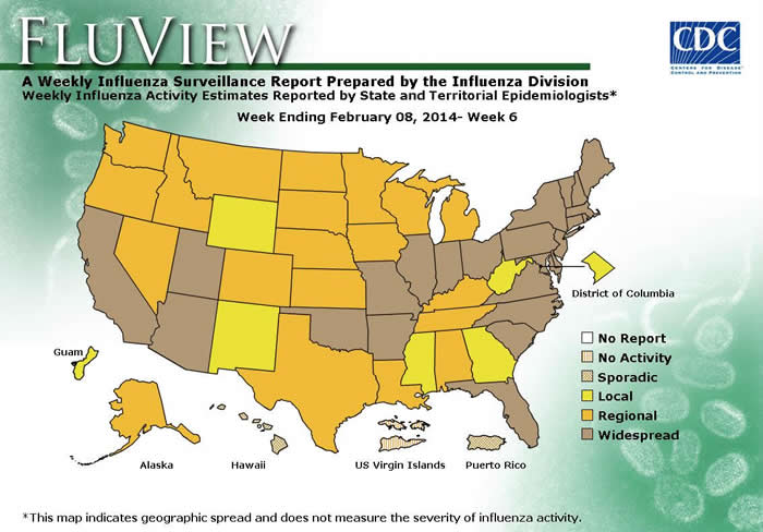 Map of flu activity in the U.S.