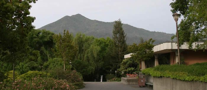 Mt. Tamalpais from College of Marin